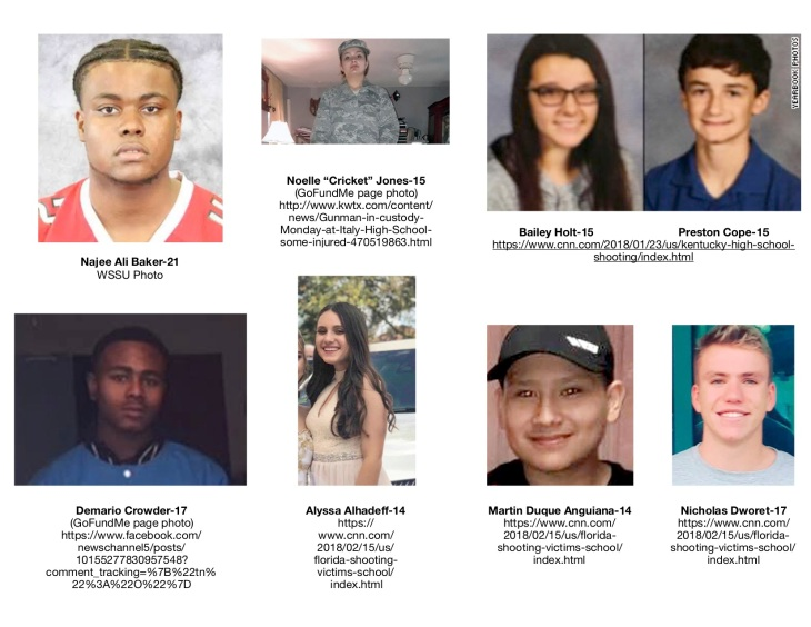 School Shooting Victims 1