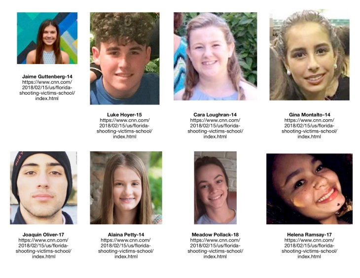 School Shooting Victims 2
